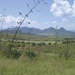Clyne Ranch Liz Petterson_900x600